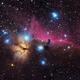Horsehead Nebula B33,                                Jorge Martin Blaz...