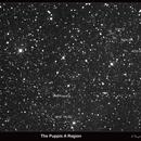 The Puppis A supernova remnant in H alpha light,                                Lawrence E. Hazel
