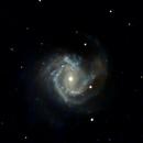 Messier 61,                                Günther Eder