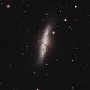 M81 & M82,                                pcyvr