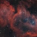 IC 1848 Soul Nebula,                                Martin Voigt