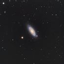NGC2841,                                Bradisback