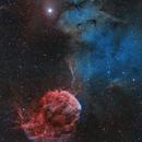 Jellyfish Nebula IC443 mosaic,                                Barry Wilson