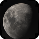 Moon Mosaic,                                nazarine