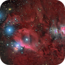 Orion widefield,                                Giulio