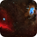 Four Glorious Nebulae - Orion, Running Man, Horsehead and Flame,                                Rudy Pohl