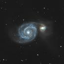 M51 - Whirlpool Galaxy,                                Amir Salehi