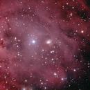 NGC2174,                                Adrie Suijkerbuijk