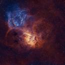 Lion Nebula,                                Wei Li