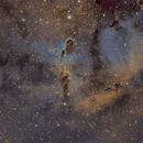 "IC1396 ""Elephants Trunk"",                                John Massey"