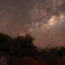 Vía Láctea y arbustos,                                Angel Requena