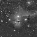 Horse Head and Flame Nebula Luminance,                                Houston Haynes
