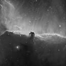 Horsehead nebula in H-alfa,                                Jaime Alemany