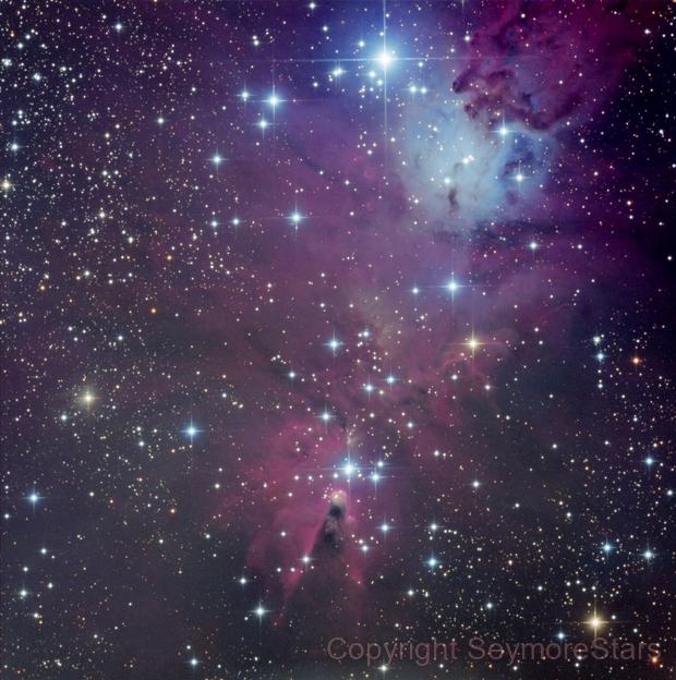 Cone Nebula,                                Seymore Stars