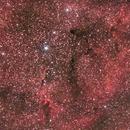 IC1396,                                Matt Fulghum