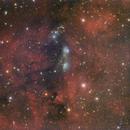 NGC6914,                                WJM Observatory