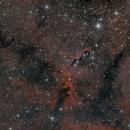 IC1396A,                                Matthias Steiner