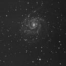 M101 vom 09.06.2013,                                Klemmi