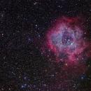 The Rosette Nebula,                                Roger Clark