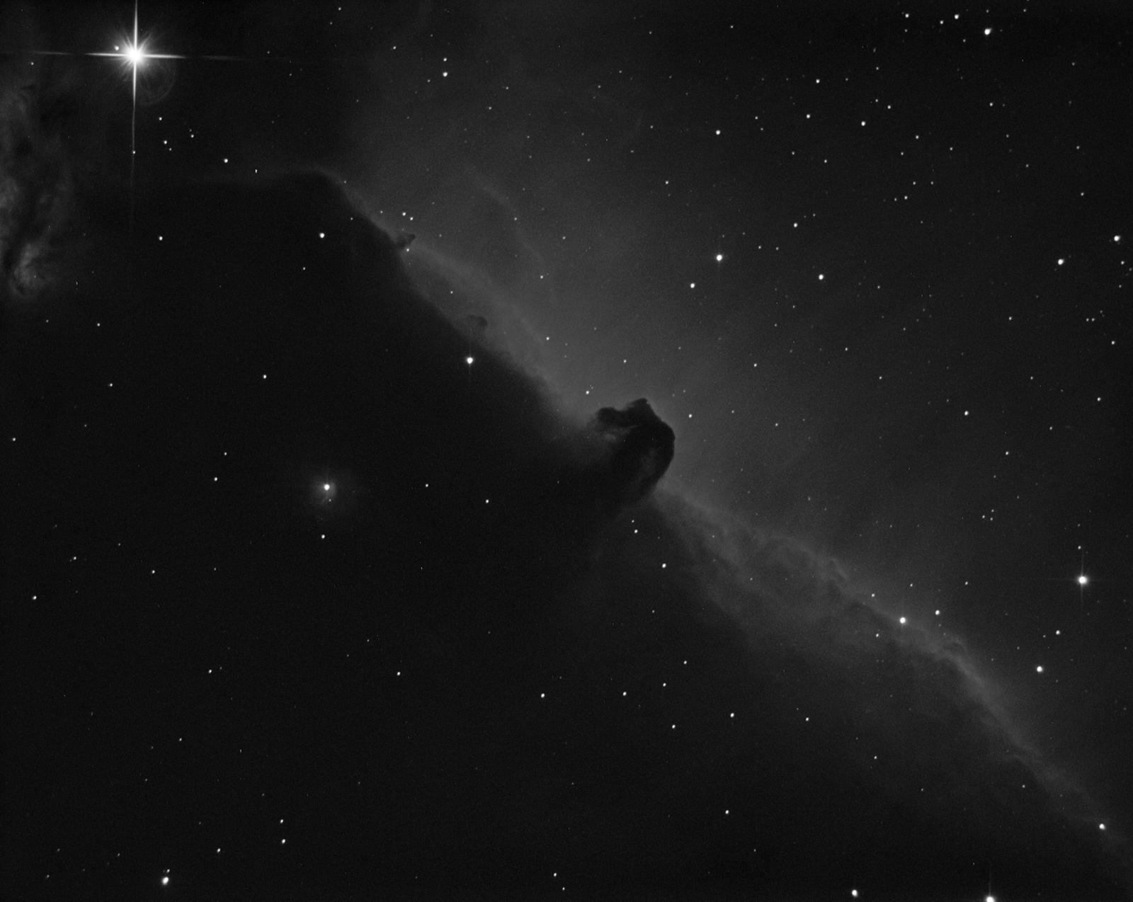 Horsehead Nebula in Ha,                                Joel Shepherd