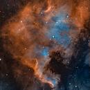 NGC 7000 North America Nebula,                                Shivam Bansal