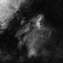 Pelican Nebula (IC 5070) h-alpha full image,                                HaSeSky