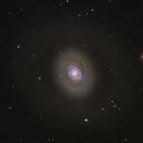 Cat's Eye Galaxy - M94/NGC4736,                                Drew Evans