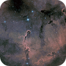 IC 1396A Elephant's Trunk Nebula in SHO,                                Richard Pattie
