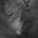 NGC2264 Cône nebula,                                LAMAGAT Frederic