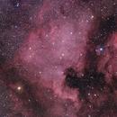 NGC 7000, North America Nebula, Cyg,                                Vladimir Machek