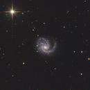 Messier 99,                                Chris Lasley