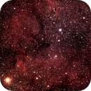IC 1396 ,                                Francis Neptunion31