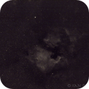 My first narrow band image - NGC 7000 and the Pelican in H alpha,                                Ian Dixon