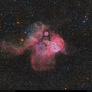 NGC 2467: Skull and Crossbones Nebula,                                Dhaval Brahmbhatt