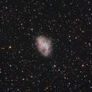 M1, The Crab Nebula,                                Shannon Calvert