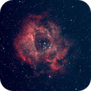 Rosette Nebula from San Diego Backyard,                                Tom