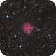 Cocoon Nebula - IC5146 - First Light UNC 150/600,                                Thomas Richter