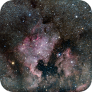 NGC 7000 Region Wide,                                Scotty Bishop