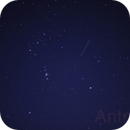 Orion et un invité surprise,                                Antman