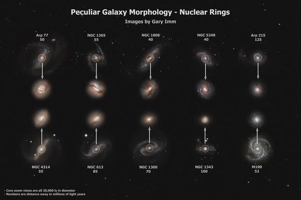 Peculiar Galaxy Morphology - Nuclear Rings,                                Gary Imm