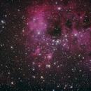 IC410 Tadpole nebula,                                setheddy