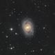 M95 - Classic Barred Spiral,                                Jim Morse