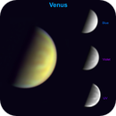 A golden Venus....the blue-violet-UV spectrum shifted to the visible spectrum,                                Niall MacNeill