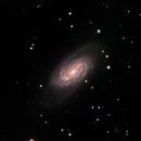 NGC 2903,                                Richard Kelley
