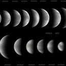 Venus  2017,                                Raimondo Sedrani