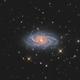 NGC 2336 (and IC 467),                                Chris Sullivan