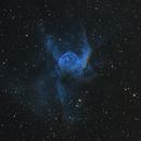 NGC 2359, Thor's Helmet,                                Madratter
