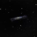 NGC 3628 - smiling, really.,                                Tom Gray