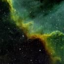 NGC 7000 - Great Wall SHO,                                Ruediger