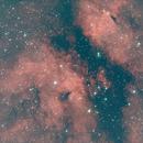 Gamma Cygni Nebula Region,                                Robin Clark - EAA imager